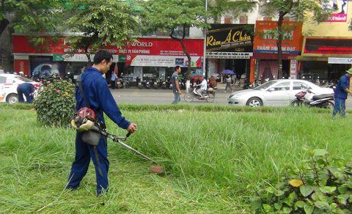 Dịch vụ cắt cỏ dự án
