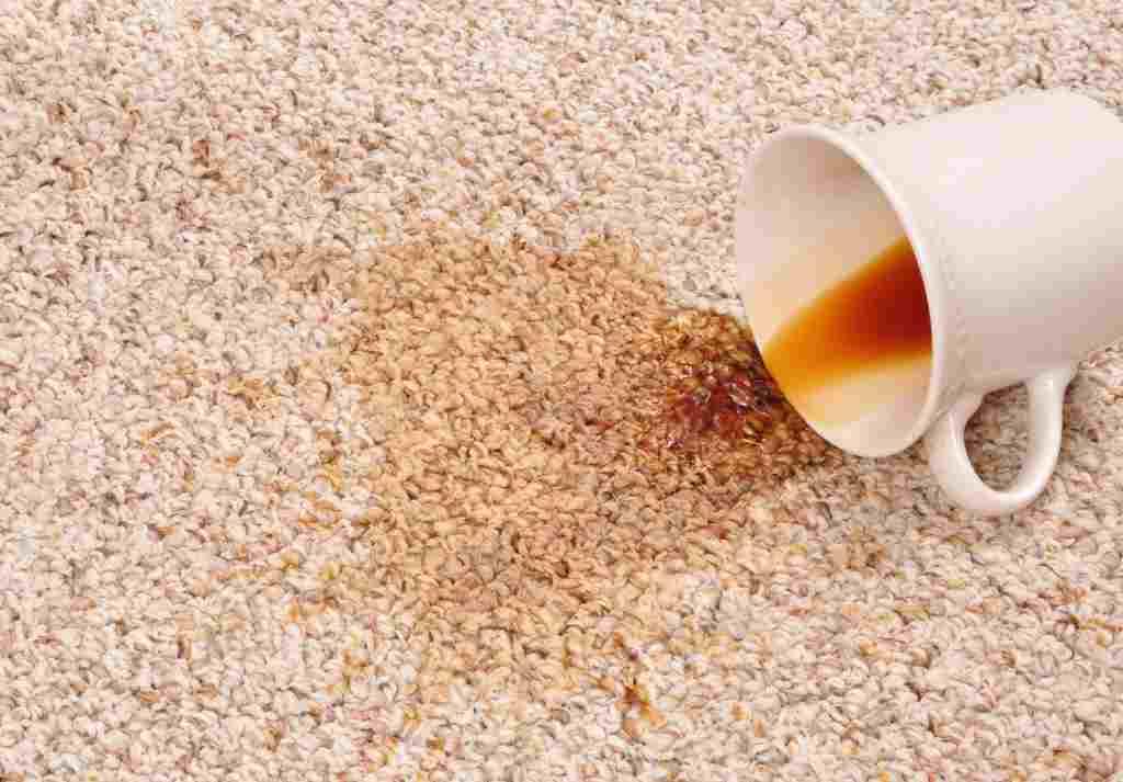 Tẩy vết bẩn trên thảm