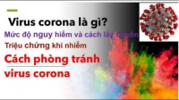 Virus Corona Chủng Mới Và Những Cách Phòng Chống Hiệu Quả